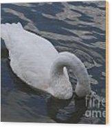 Swan Dining Wood Print