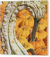 Swan Gourd Wood Print