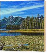 Swan Lake II Wood Print