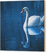Swan On Lake Wood Print