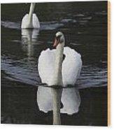 Swan Pair 2 Wood Print