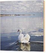 Swan Song Wood Print by Vicki Jauron