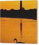 Swan Sunset At The Light Wood Print