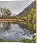 Swan Swimming On A Lake Wood Print