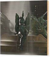 Swann Fountain At Night Wood Print