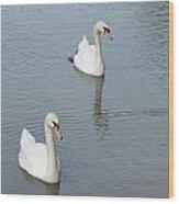 Swans Drifting Along Wood Print