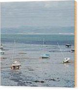 Swansea Bay Sailboats Wood Print