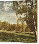 Swedish Landscape Wood Print