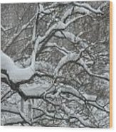 Swedish Winter Wood Print