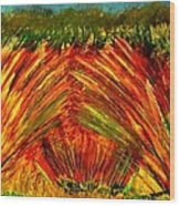 Sweeping Fields Wood Print