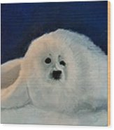 Sweet Little Winter Seal Pup Of My Soul Wood Print