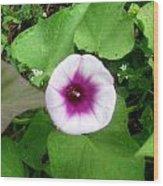 Sweet Purple Flower Wood Print by Juliana  Blessington