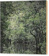 Sweetwater Strand Wood Print