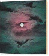 Swim To The Moon Wood Print