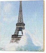 Swimming Pleasure In Paris Wood Print by Steve K