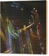 Swinging Wood Print by Charles Warren