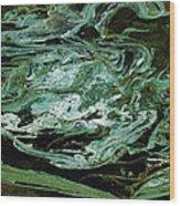 Swirling Algae Wood Print
