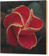 Swirling Star Wood Print