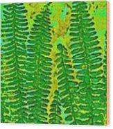 Sword Fern Fossil-green Wood Print