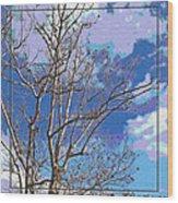 Sycamore Tree Branch Art Wood Print