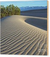 Symphony Of The Sand Wood Print by Bob Christopher