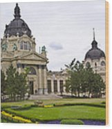 Szechenyli Baths - Budapest Wood Print