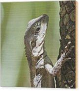 Ta-ta Lizard Wood Print