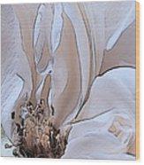 Tabatha Wood Print