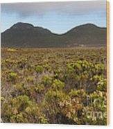 Table Mountain National Park Wood Print