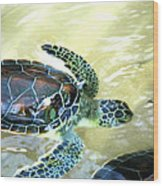 Tag Along Turtle Wood Print