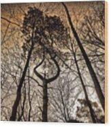 #tagstagram .com #me #implus_daily Wood Print by Pete Michaud