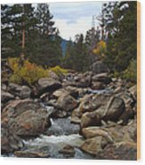 Tahoe Creek Wood Print