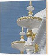 Taj Mahal Casino Wood Print