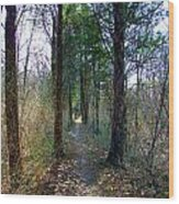 Taking The Long Trail Wood Print