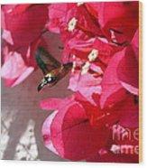 Taking The Nectar Wood Print
