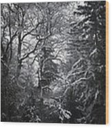 Tale Of The Trees Wood Print by Akos Kozari