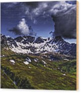 Talkeetna Mountains In Summer Wood Print