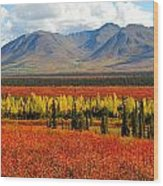 Talkeetna Mountains Moment Wood Print