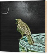 Talking To The Moon Wood Print