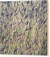 Tall Grass Wood Print