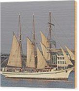 Tall Ship Seven Wood Print