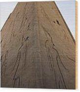 Tall Wall At Edfu Wood Print by Darcy Michaelchuk