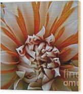 Tangerine Tinged Wood Print