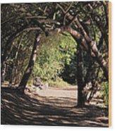 Tangled Arch Wood Print