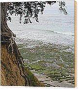 Tangled Overlook Wood Print