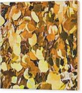 Taos Gold Iv Wood Print