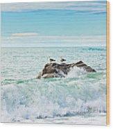 Tasman Sea Wood Print