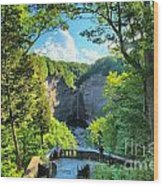 Taughannock Falls Overlook Wood Print