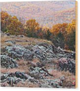 Taum Sauk Mountain Glade I Wood Print