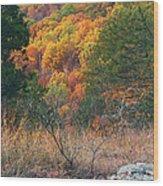Taum Sauk Mountain Glade IIi Wood Print